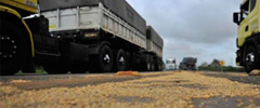 Infraestrutura ruim aumenta custo do transporte de soja e milho