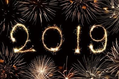 Novos rumos para 2019