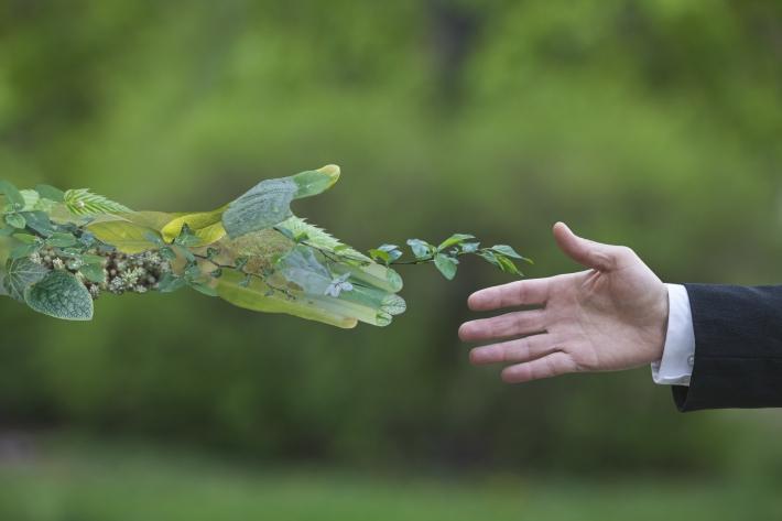 Como fazer a gestão ambiental decolar nas pequenas empresas