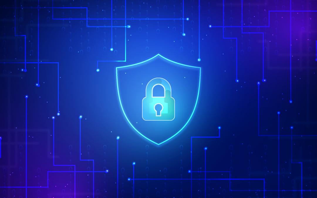 Senado confirma primeira diretoria da Autoridade Nacional de Proteção de Dados