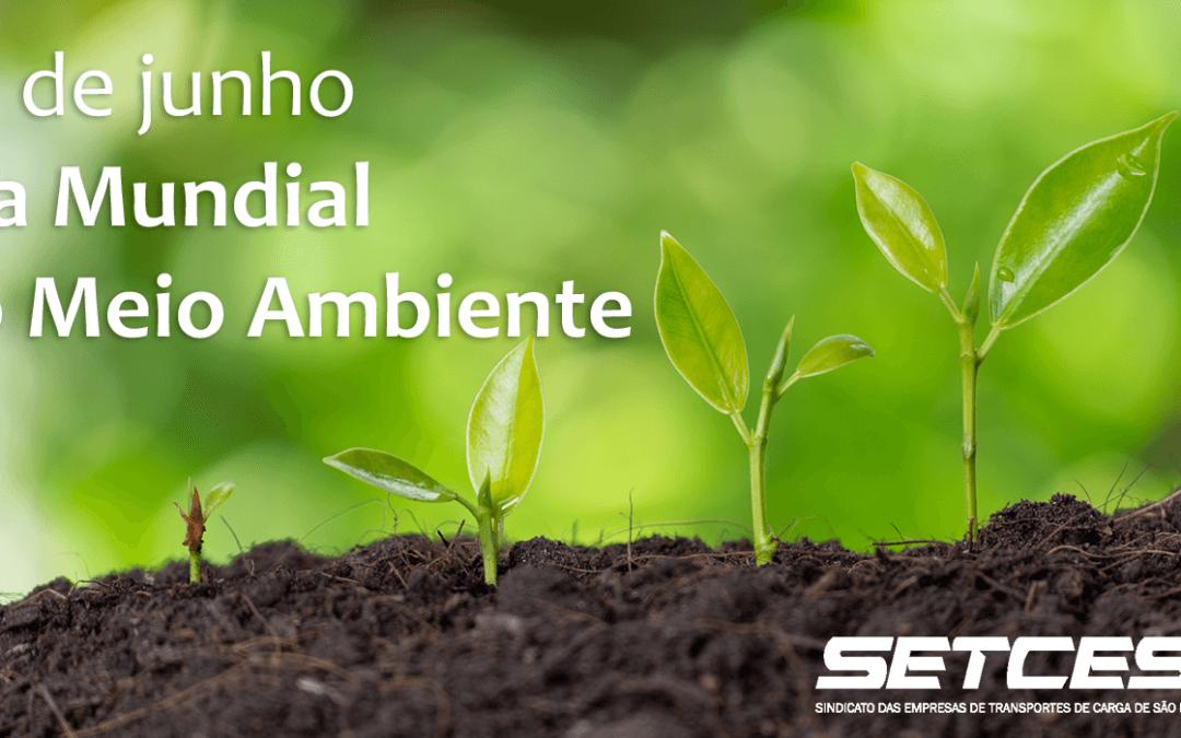 Dia Mundial do Meio Ambiente: uma homenagem do SETCESP