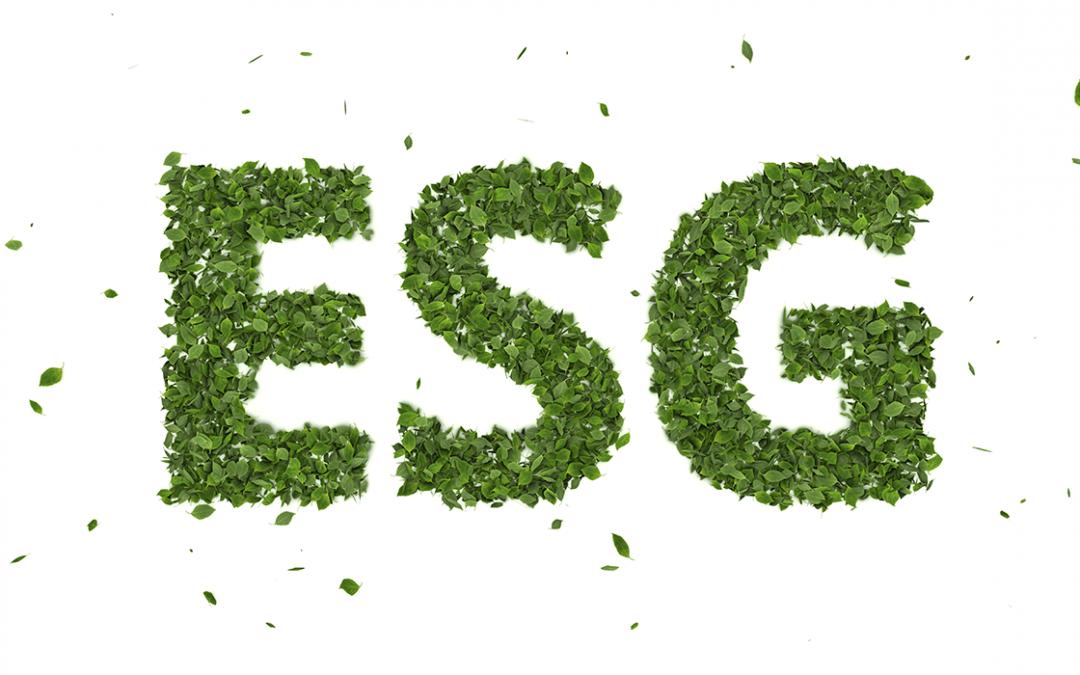 O que é ESG? Comece a entender a sigla do momento