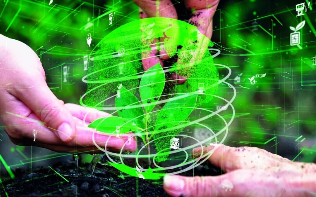 A qualidade do serviço passa por manter o padrão ESG